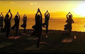Yoga global journey